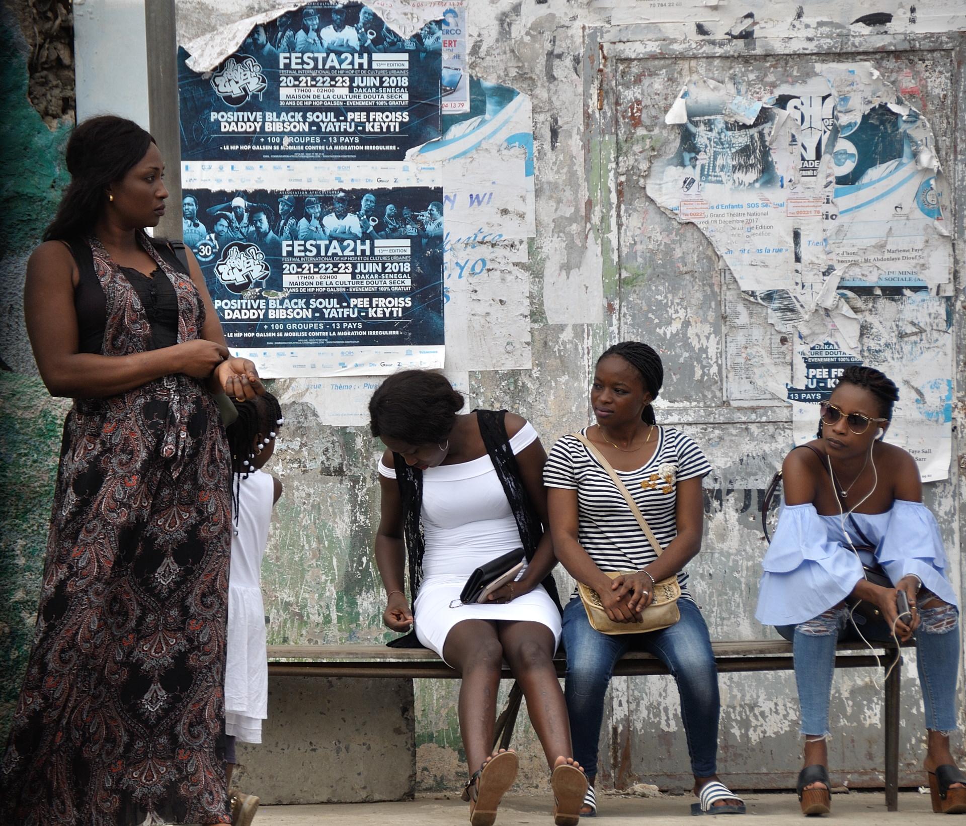 06-BlogSengebambia-003